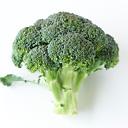 食物繊維が多そうなブロッコリーなら2.7株
